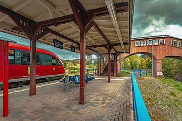 Erzgebirgsbahn bij het station Thermalbad Wiesenbad van