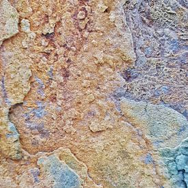 tbree or four shades of rust van Rüdiger Hirt