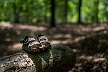 Des sandales dans la forêt sur Joost Potma
