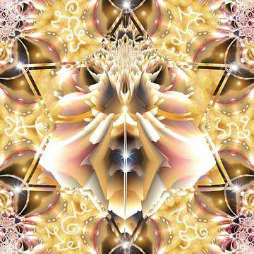Die Honigbiene von Nina IoKa