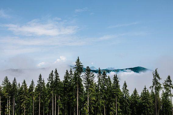 Als de bergen uit het bos opstijgen van Wilko Visscher
