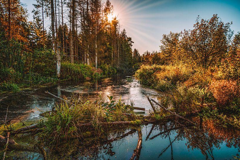 Natuurreservaat Wilhelmsdorf van MindScape Photography