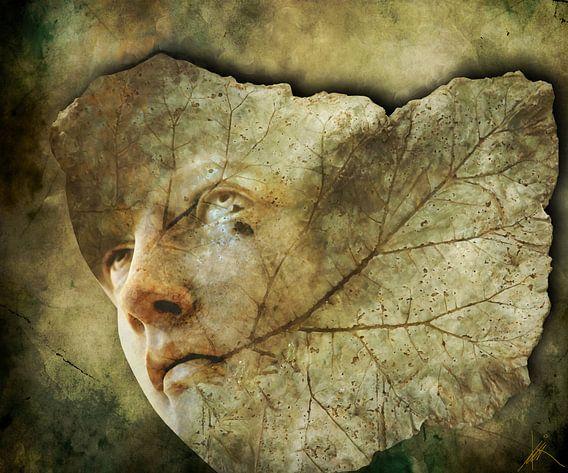 The Leaf That Falls
