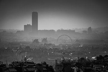 Die Dächer mit Schornsteinen von Paris von Esther Faber