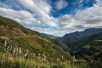 De Andes uitlopers van Ecuador von Lex van Doorn