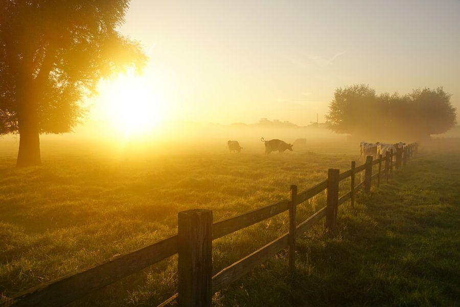 Morgenstond van Dirk van Egmond