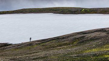 Island von Timo Bergenhenegouwen