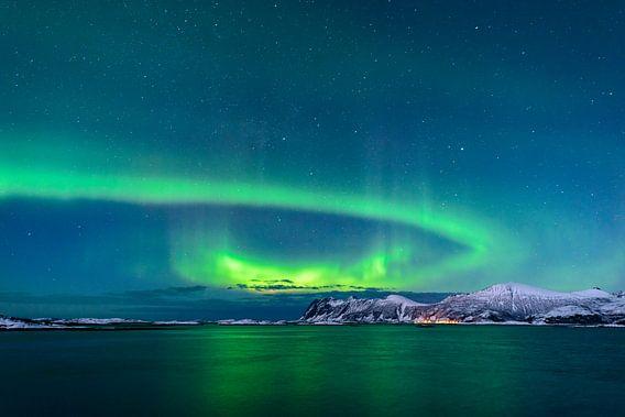 Nordlichter, Polarlicht oder Aurora Borealis im nächtlichen Himmel über Senja