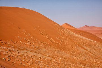 De rode duinen van Sossusvlei van Angelika Stern