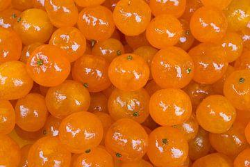 Specialiteit Candied Clementines in Nice van Werner Dieterich