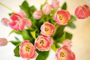Boeket roze tulpen van