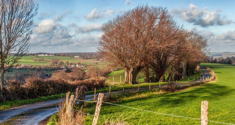 Panorama  van het Zuid-Limburgse landschap in de buurt van Epen van John Kreukniet