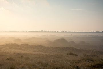 Mistige duinen bij zonsopkomst van Mark Scholten