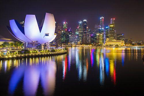 De Singapore Skyline van Michel van Rossum