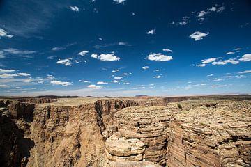 blik op de grand canyon van Hans Jansen