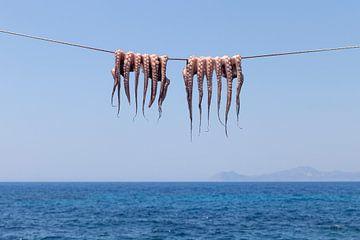 Oktopus auf der Wäscheleine von Sharon de Groot