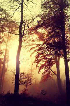 Herbsterinnerungen von Dirk Wüstenhagen