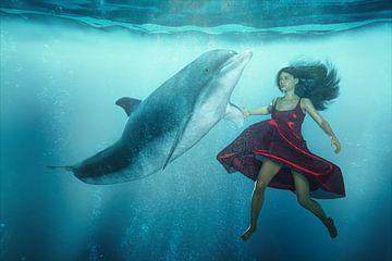 Dolfijn Tango