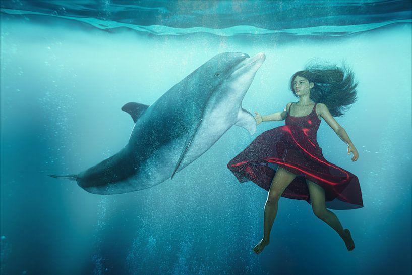 Dolfijn Tango van Arjen Roos