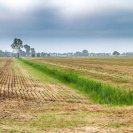 Niederländische Landschaft von Mark Bolijn