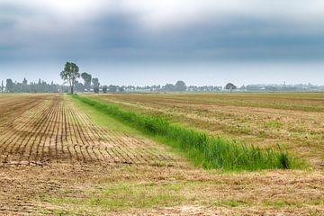 Niederländische Landschaft
