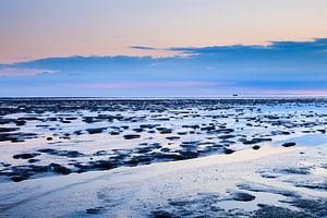 De Waddenzee in het blauwe uur van