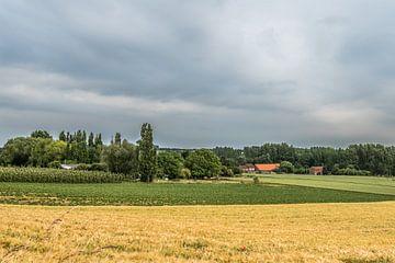 Gelinden, Belgisch Limburg von Martine Dignef