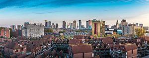 Skyline Rotterdam vanaf een 'andere' kant