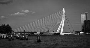 Erasmusbrug in Rotterdam, Nederland / Zwart en wit