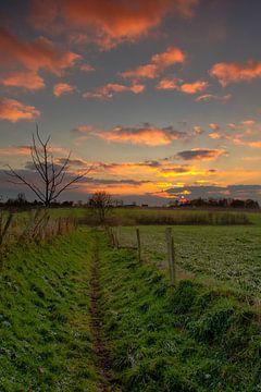 Pad naar de ondergaande zon von Maurice Hertog