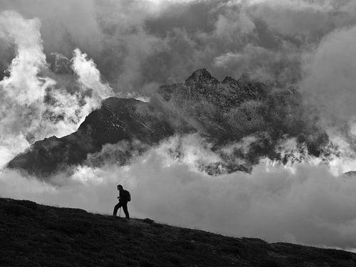 Solitude van Menno Boermans