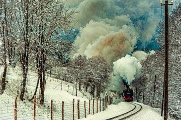 Fichtelbergbahn in het Erzgebergte van Johnny Flash