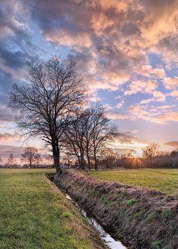 Agrarisch landschap met een gracht en bomen tijdens een zonsondergang van Tony Vingerhoets