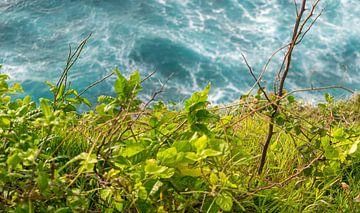 Oceaan en Land von Tom de Groot