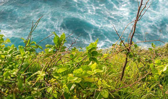 Oceaan en Land van Tom de Groot