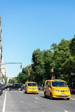 Taxi's aan Central Park, New York van Puck Bertens