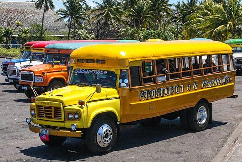 Colourful busses in Samoa