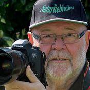 Rudolf Brandstätter Profilfoto