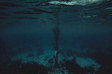 Sous l'eau Indonésie sur Marco Vet