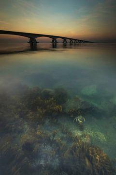 De zeelandbrug van Marcel van Balkom