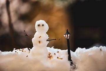de kleine sneeuwpop van Tania Perneel