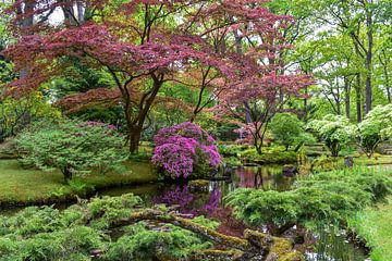 Japanse tuin van Chayenne Batenburg-Boom