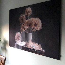 Klantfoto: Paardebloemzaad Pod, Lydia Jacobs van 1x, als print op doek