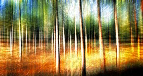 Abstracte bomenlandschap