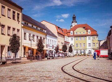 Altstadt von Döbeln in Sachsen von Animaflora PicsStock
