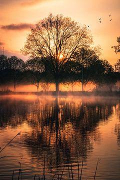 Zonsopgang met mist bij de Amstelrivier van Dylan Shu