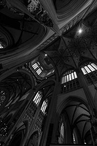Sint-Janskathedraal Den Bosch, zwart-wit van