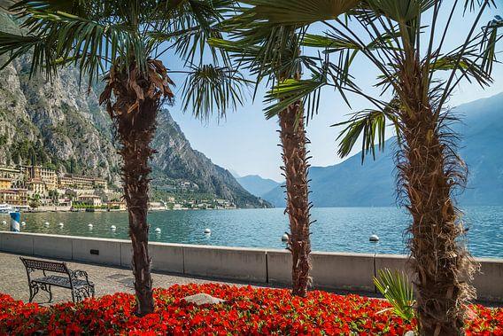 GARDASEE Prächtige Uferpromenade in Limone sul Garda