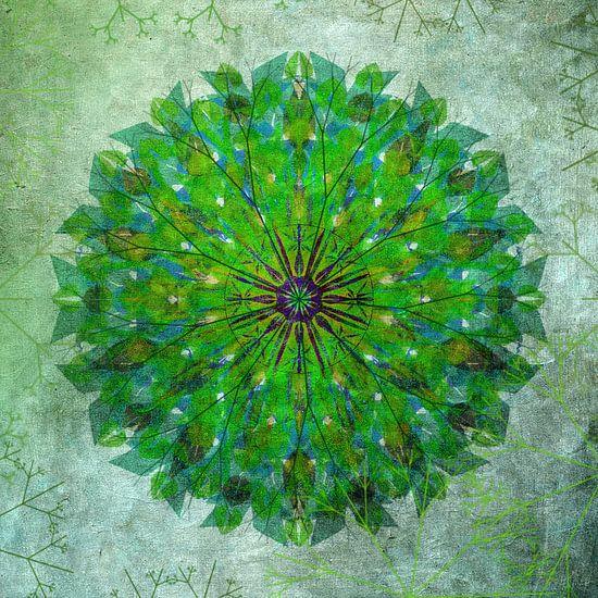 Mandala - grunge in green