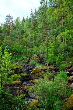 Zweeds landschap 012 von Geertjan Plooijer
